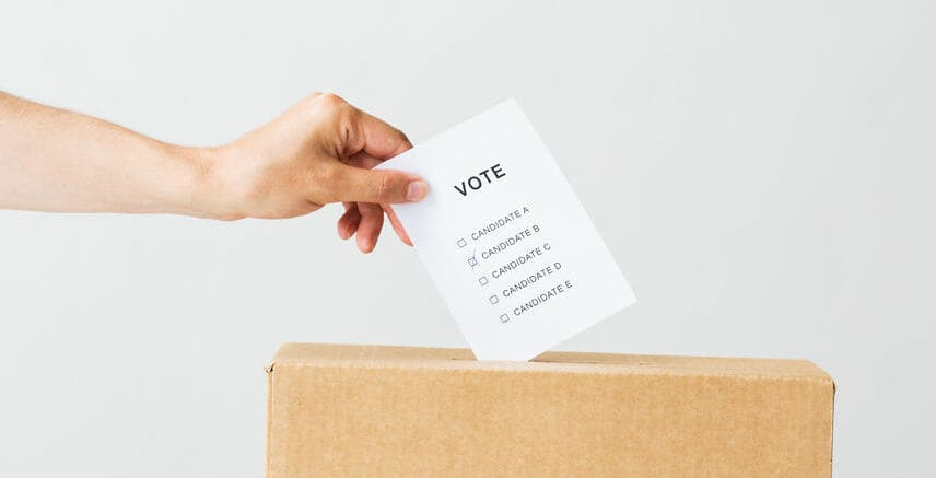 If I Can't Vote, What Can I Do? A Kid's Guide to US Elections